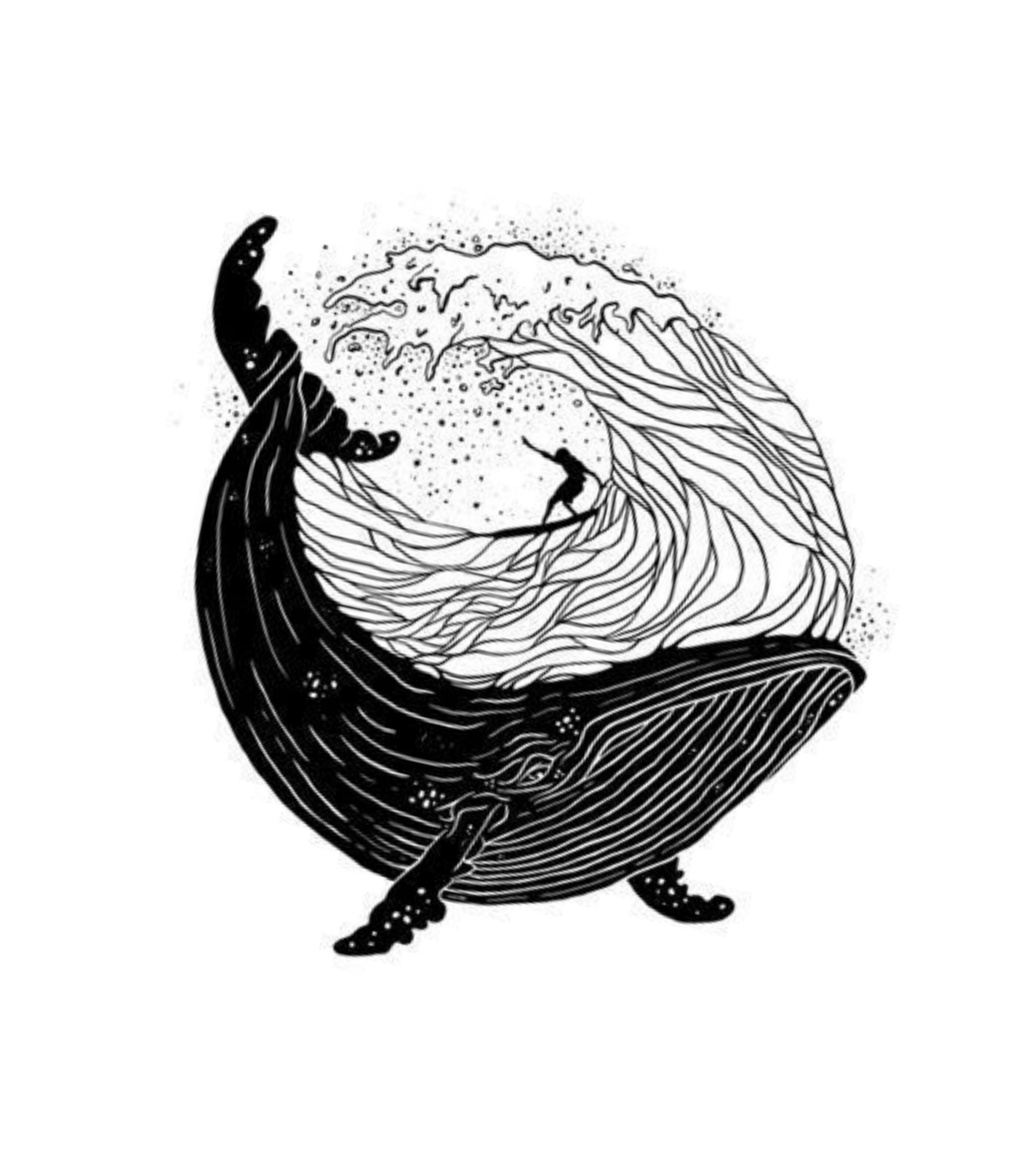 Camiseta Baleia Na Agua Vandal