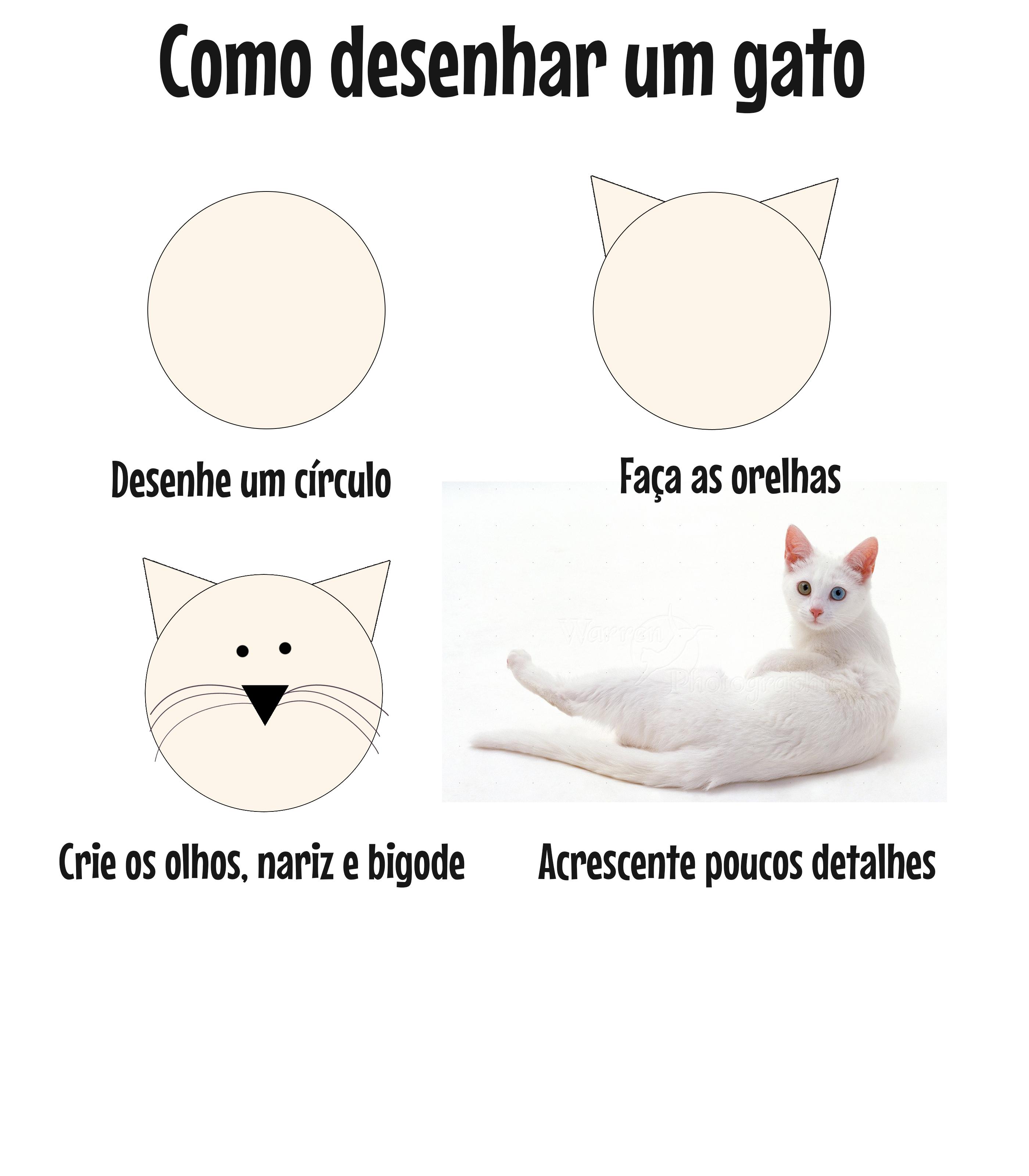 Camiseta Estampa Como Desenhar Um Gato